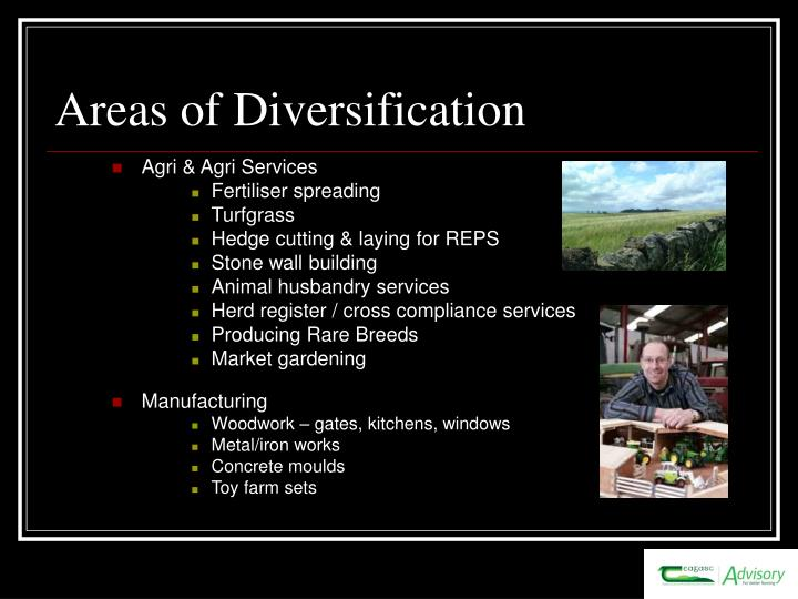 Areas of Diversification