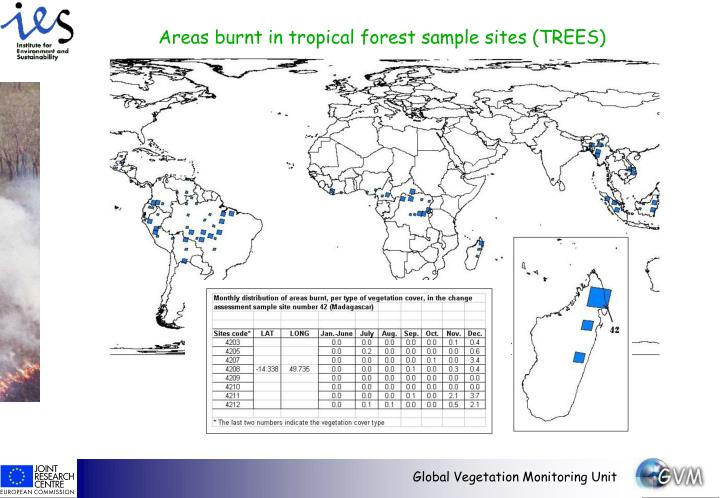 Areas burnt in tropical forest sample sites (TREES)