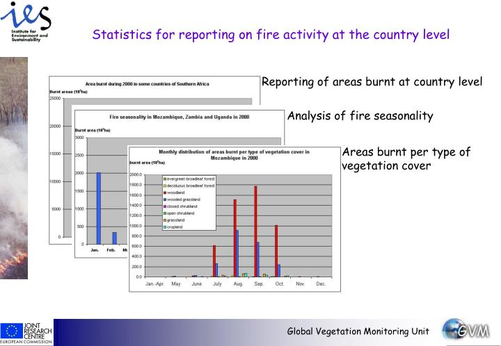 Reporting of areas burnt at country level