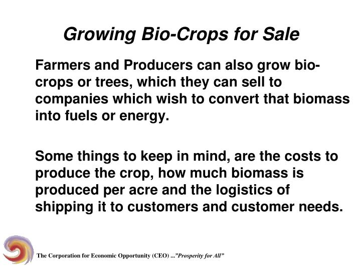 Growing Bio-Crops for Sale