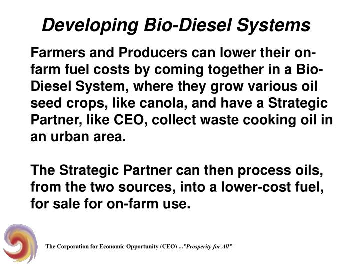 Developing Bio-Diesel Systems
