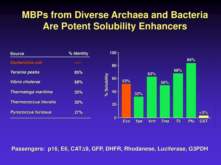 MBPs from Diverse Archaea and Bacteria