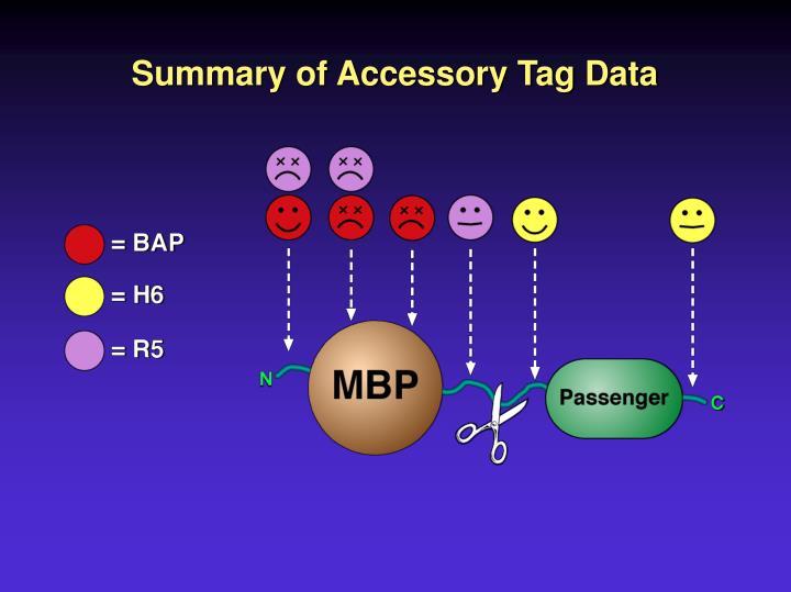 Summary of Accessory Tag Data