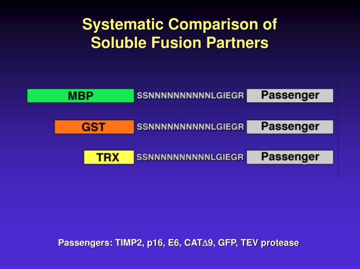 Systematic Comparison of