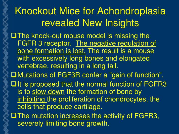 Knockout Mice for Achondroplasia revealed New Insights