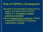 role of fgfr3 in development