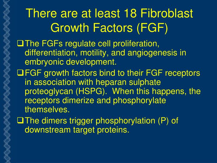 There are at least 18 Fibroblast Growth Factors (FGF)