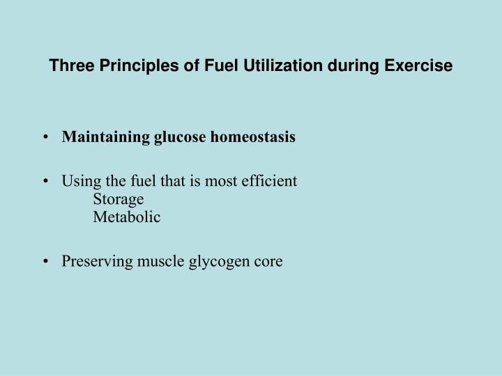 Three Principles of Fuel Utilization during Exercise