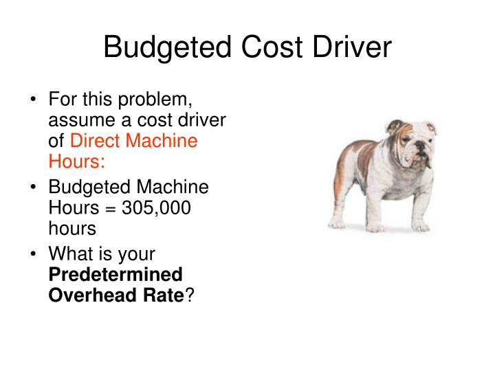 Budgeted Cost Driver