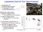 luminosity control pair spectrometer