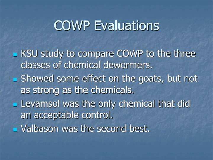COWP Evaluations
