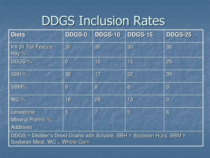 DDGS Inclusion Rates