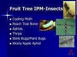 fruit tree ipm insects