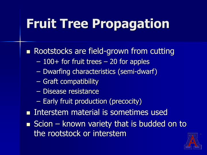 Fruit Tree Propagation