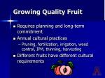 growing quality fruit