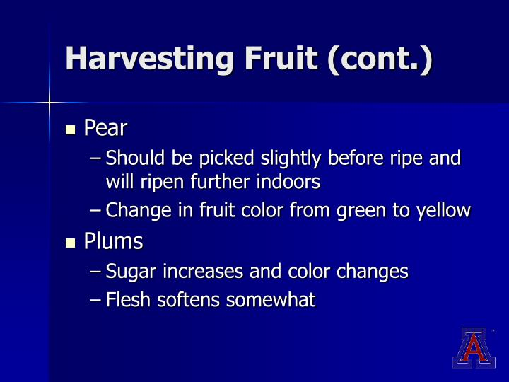 Harvesting Fruit (cont.)
