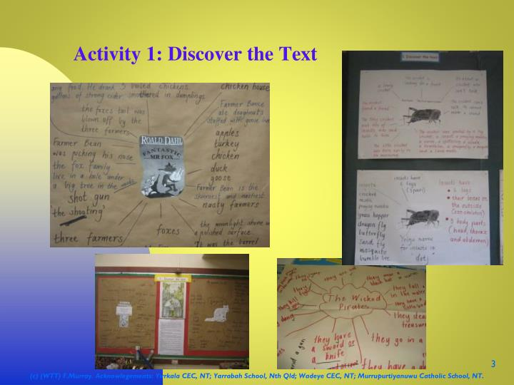 Activity 1 discover the text