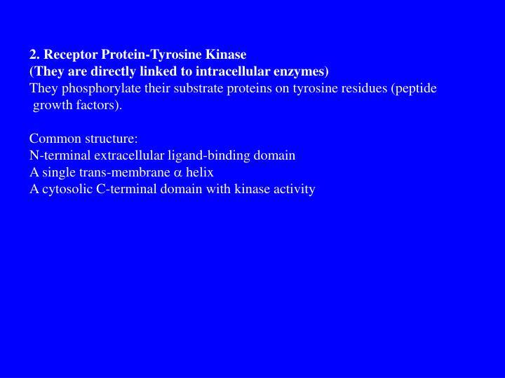 2. Receptor Protein-Tyrosine Kinase