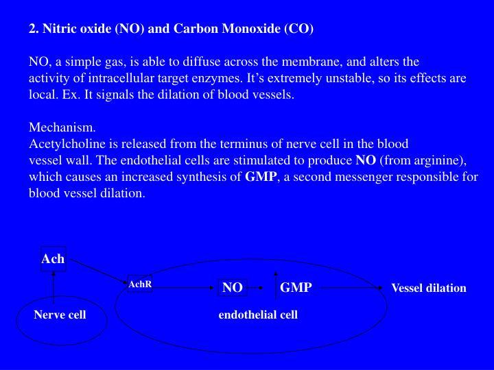 2. Nitric oxide (NO) and Carbon Monoxide (CO)