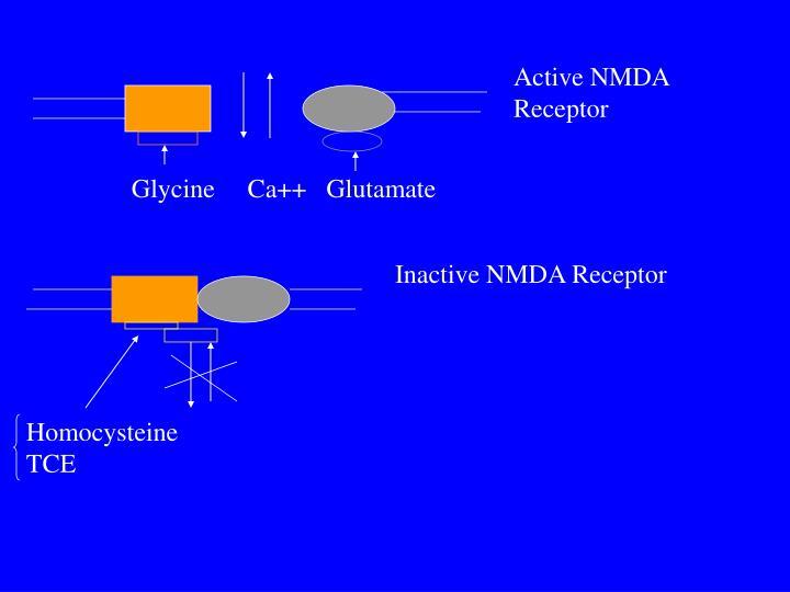 Active NMDA
