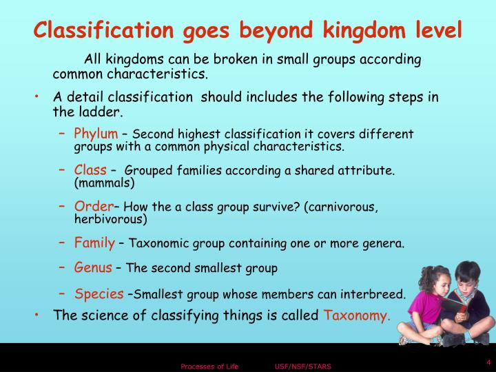 All kingdoms can be broken in small groups according common characteristics.