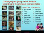classifying the group of the animals according to the physical characteristics