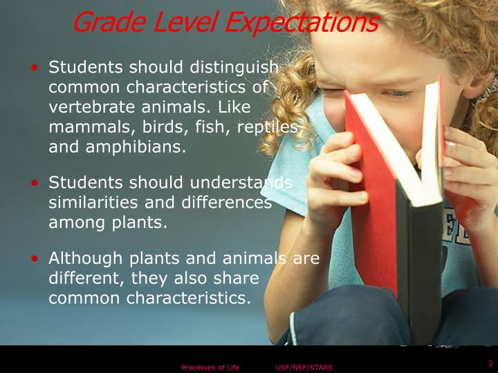 Grade Level Expectations