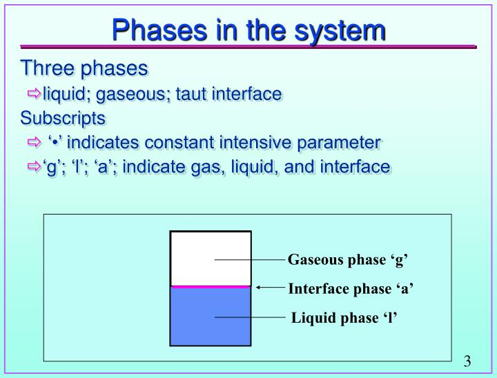 Phases in the system