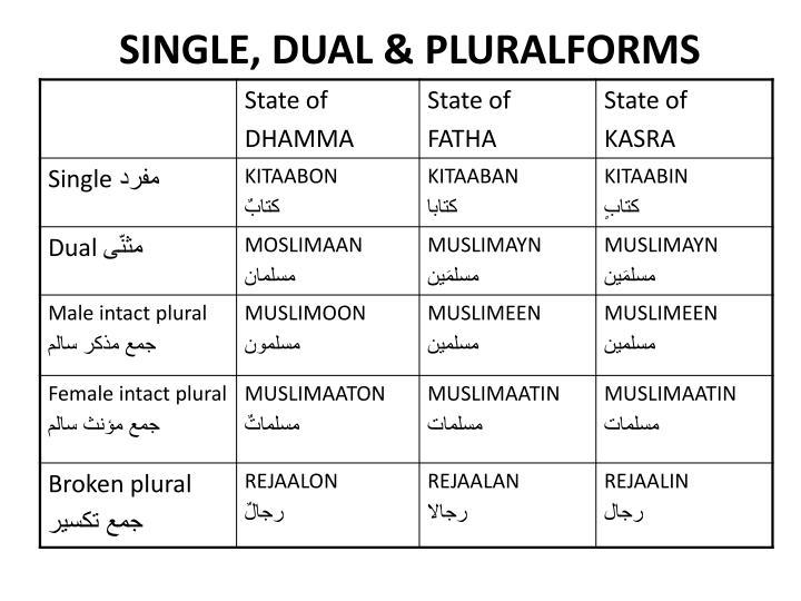 SINGLE, DUAL & PLURALFORMS