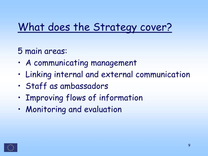 What does the Strategy cover?