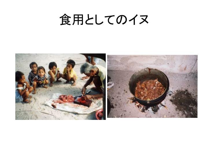 食用としてのイヌ