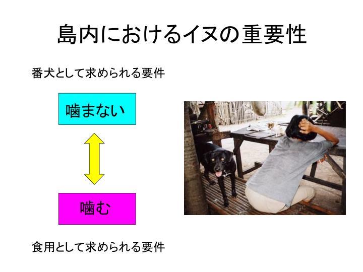 島内におけるイヌの重要性