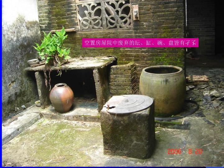 空置房屋院中废弃的坛、缸、碗、盘皆有孑孓