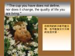 the cup you have does not define nor does it change the quality of life you are living
