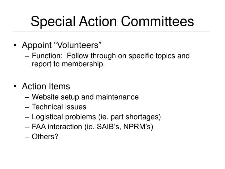 Special Action Committees