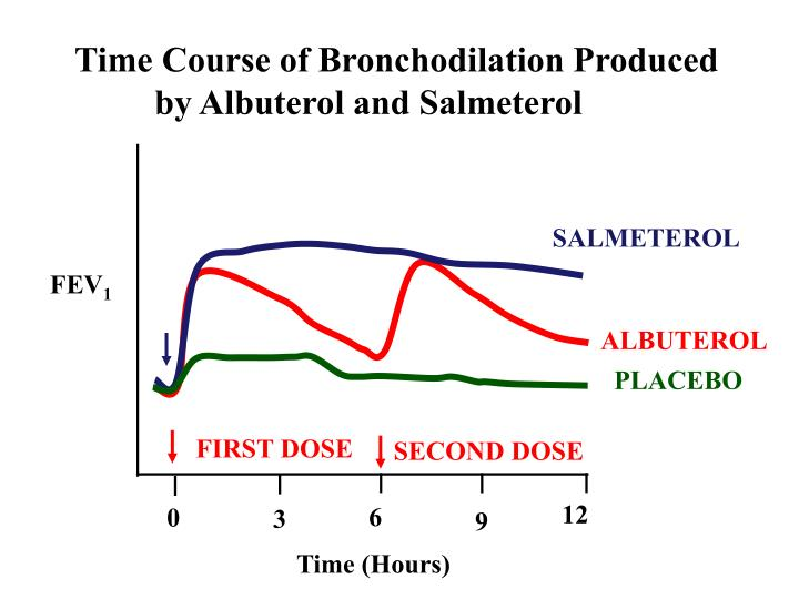 Time Course of Bronchodilation Produced 	by Albuterol and Salmeterol