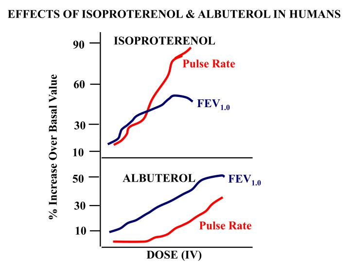 EFFECTS OF ISOPROTERENOL & ALBUTEROL IN HUMANS