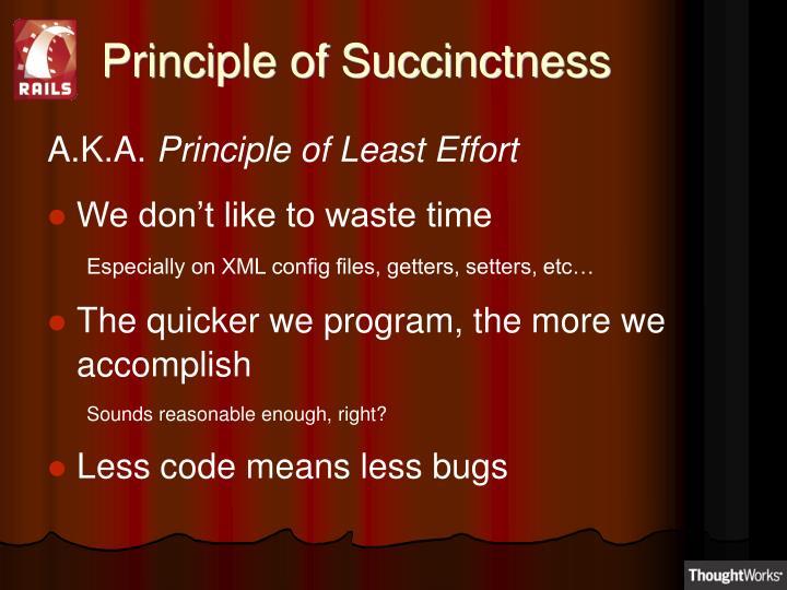 Principle of Succinctness