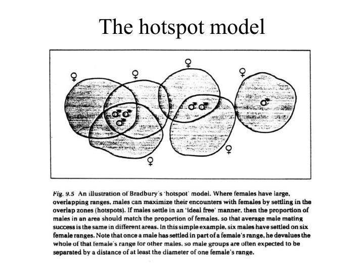 The hotspot model