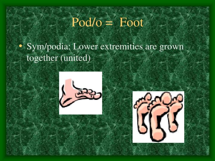 Pod/o =  Foot