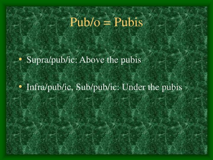 Pub/o = Pubis