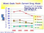 miami dade youth current drug abuse