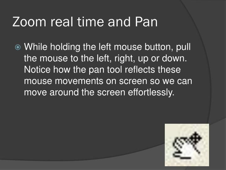 Zoom real time and Pan