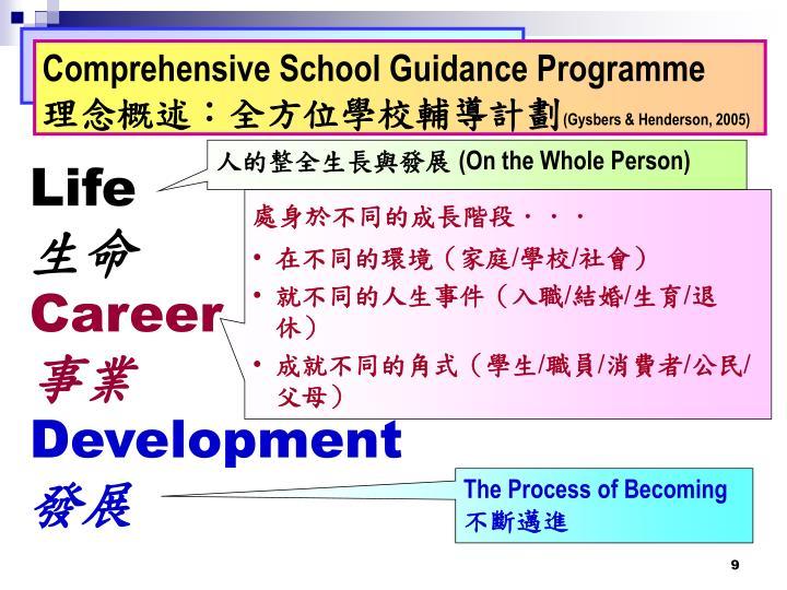 Comprehensive School Guidance Programme