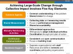 achieving large scale change through collective impact involves five key elements