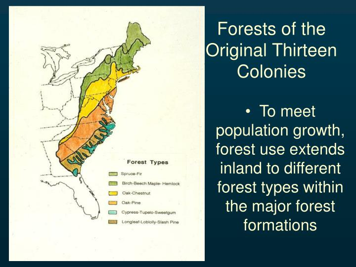 Forests of the Original Thirteen Colonies