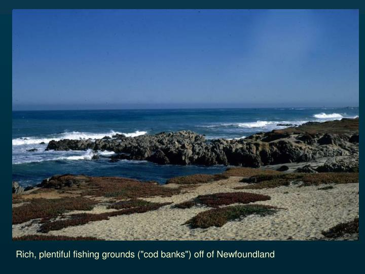 "Rich, plentiful fishing grounds (""cod banks"") off of Newfoundland"