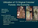 utilization of 13 original colonies forests the economy