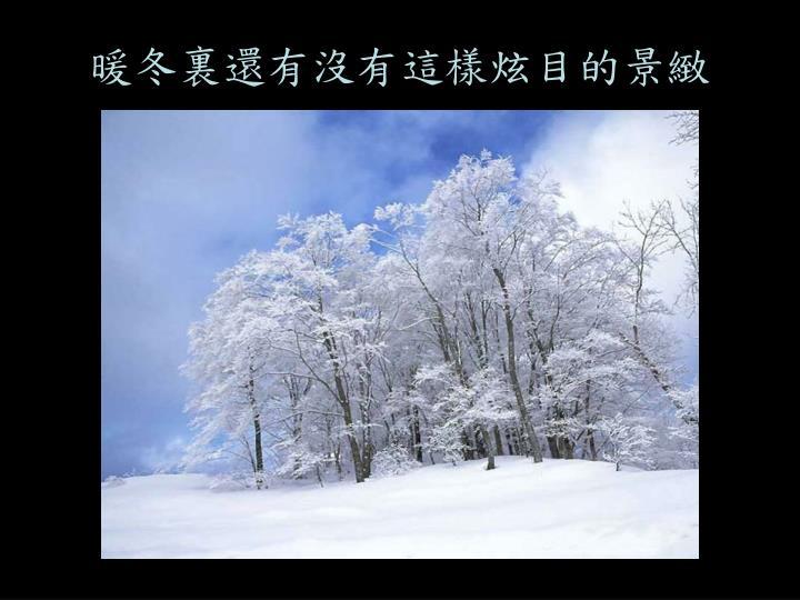 暖冬裏還有沒有這樣炫目的景緻