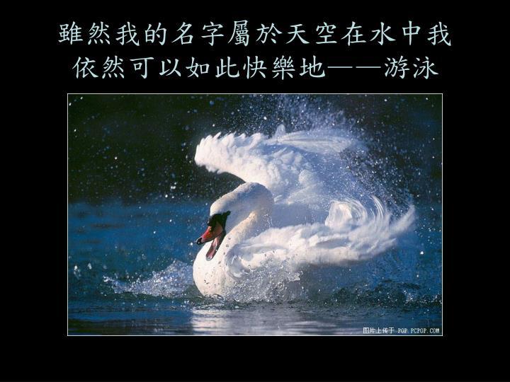 雖然我的名字屬於天空在水中我依然可以如此快樂地——游泳
